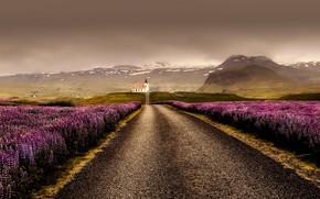 Картинка дорога, горы, тучи, поля, Исландия
