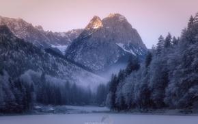 Картинка зима, иней, лес, снег, горы, природа, дымка