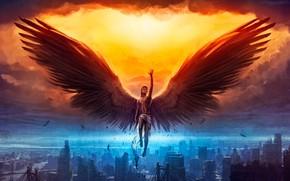 Картинка крылья, ангел, парень