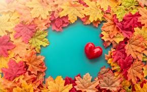 Обои осень, листья, любовь, сердце, red, love, heart, autumn, leaves, romantic, valentine, maple