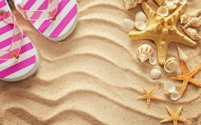 Картинка песок, пляж, лето, отдых, ракушки, summer, beach, каникулы, sand, сланцы, vacation, starfish, seashells