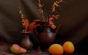 Картинка осень, ветки, апельсины, груша, фрукты, натюрморт, облепиха