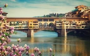 Обои весна, Ponte Vecchio, view, Италия, мост, Italy, travel, цветение, Europe, panorama, Florence, город, city, cityscape, ...