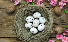 Картинка цветы, корзина, яйца, весна, Пасха, розовые, wood, pink, blossom, flowers, spring, Easter, eggs, decoration, Happy, …