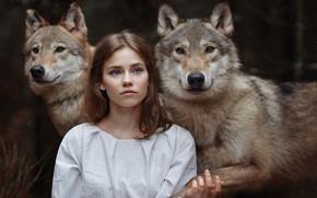Картинка девушка, волки, друзья, девушка и волки, Светлана Никотина