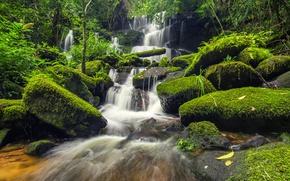 Картинка лес, река, камни, green, водопад, мох, forest, river, landscape, jungle, beautiful, waterfall, tropical