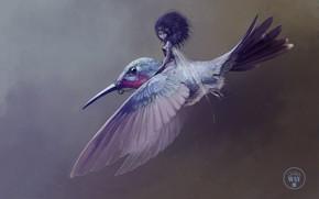 Картинка девушка, фэнтези, колибри, арт, наездница, феечка, Jean-Baptiste Monge, Sylph in the Wind