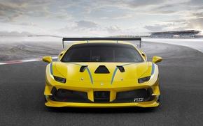 Картинка Ferrari, logo, sky, yellow, cloud, race, speed, horse, kumo, stallion, Ferrari 488, aphalt, 25, Ferrari …