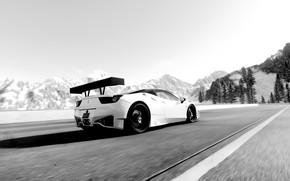 Картинка car, black & white, game, ferrari, 458, the crew, circuit