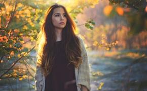 Картинка осень, лес, девушка, настроение, листва, брюнетка, длинноволосая