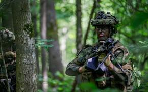 Картинка лес, солдат, пулемет, экипировка