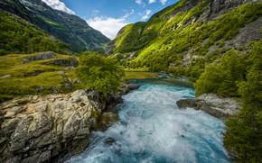 Картинка деревья, горы, река, камни, течение, Норвегия, ущелье, Sogn og Fjordane, Aurland