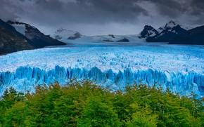 Картинка деревья, горы, ледник, Аргентина, Санта-Крус