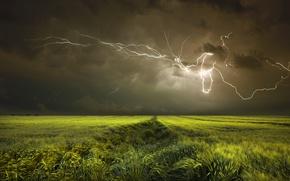 Обои поле, молния, небо, тучи