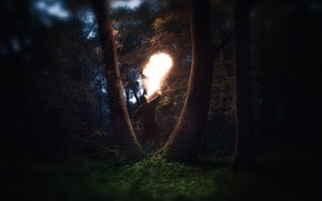 Обои Fire, Man, Forest, Trees