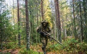 Обои лес, снайпер, винтовка