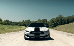Обои Mustang, Ford, Shelby, Front, Silver