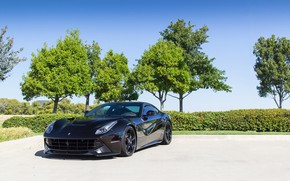 Картинка Ferrari, Black, Berlinetta, F12, Trees
