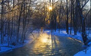 Картинка зима, лес, деревья, река, утро, мороз