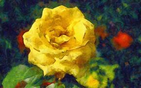 Картинка листья, роза, желтая