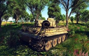 Картинка Небо, Трава, Игра, Тигр, Война, Танк, Tiger, War, Tank, War Thunder