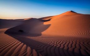 Картинка пустыня, Abu Dhabi, ОАЭ