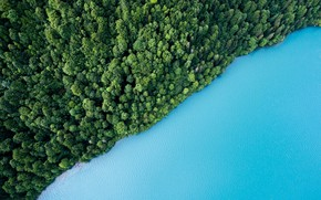 Картинка green, colorful, forest, trees, landscape, nature, blue, water, cyan, Sea, aerial view