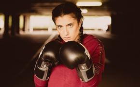 Обои бокс, девушка, взгляд