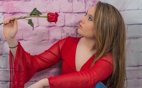 Картинка цветок, девушка, милая, роза