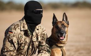 Картинка собака, маска, очки, солдат, напарники
