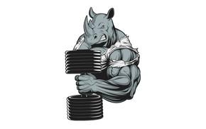 Картинка гантель, Носорог, бицепс, мускулы, морда