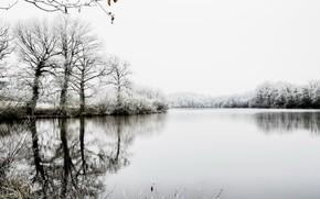 Картинка иней, деревья, озеро