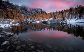 Картинка лес, небо, озеро, скалы, природ