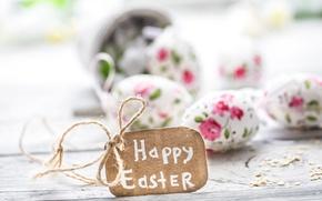 Картинка цветы, Пасха, happy, flowers, spring, Easter, eggs, decoration, pastel, яйца крашеные
