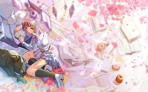 Картинка кот, девушка, цветы, птицы, яблоки, нежность, книги, заяц, собака, аниме, лепестки, арт, стул, фрукты, fujita …