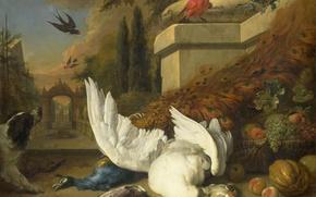Картинка животные, масло, картина, холст, Ян Баптист Веникс, Собака Мертвый Гусь и Павлин