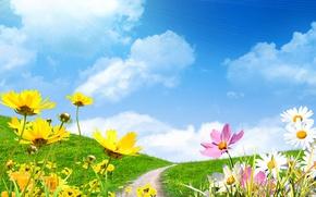 Обои весна, небо, цветы сохранить, поле, ромашки, spring, солнце