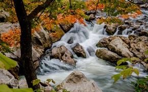 Картинка осень, деревья, ветки, река, камни, Кент, пороги, Kent, Connecticut, Коннектикут, Housatonic river, река Хусатоник