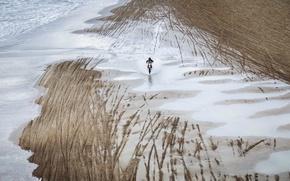 Картинка пляж, природа, мотоцикл
