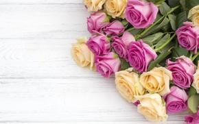 Картинка цветы, розы, букет, желтые, розовые, бутоны, pink, flowers, beautiful, roses