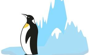 Картинка фон, пингвин, льдина