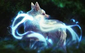 Картинка природа, волк, фэнтези, by defineDEAD