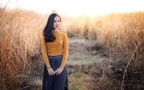 Картинка поле, фон, красавица, азиатка