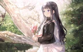 Картинка природа, арт, девочка, Card Captor Sakura