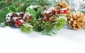 Картинка ягоды, новый год, шишки, ветки ели