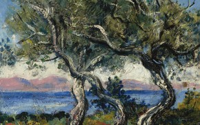 Картинка пейзаж, картина, Francis Picabia, Франсис Пикабиа, Оливковые Деревья