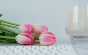 Картинка свеча, тюльпаны, клавиатура, pink, flowers, tulips, tender