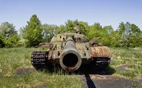 Обои оружие, армия, танк