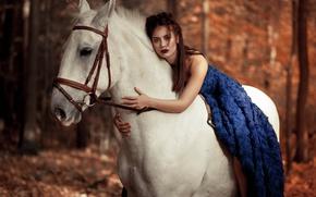 Картинка платье, лошадь, девушка, настроение, конь, взгляд, боке
