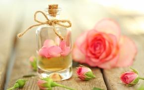 Обои духи, лепестки, rose, pink, petals, розовые розы, oil, parfume